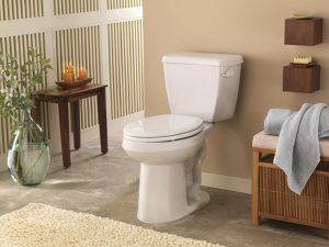 Choosing the Perfect Toilet