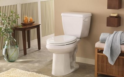 5 Helpful Tips for Choosing the Perfect Toilet