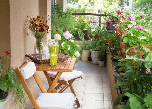 balcony, terrace, or garden